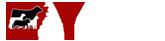 AYE Logo
